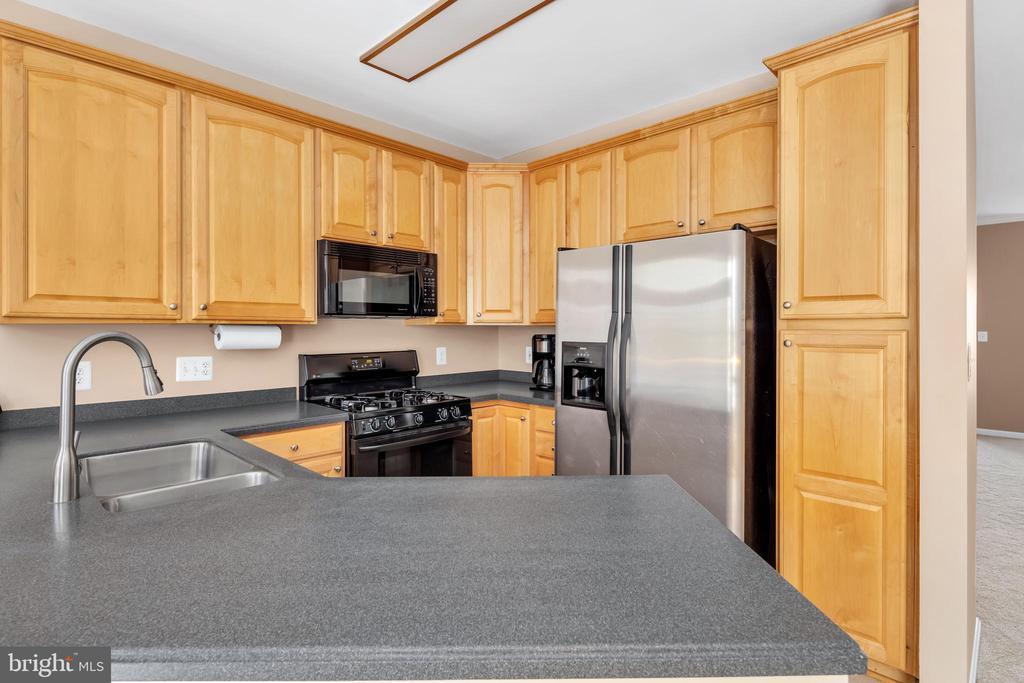 42 inch cabinets make storage a breeze - 4125 FAIRFAX CENTER CREEK DR, FAIRFAX