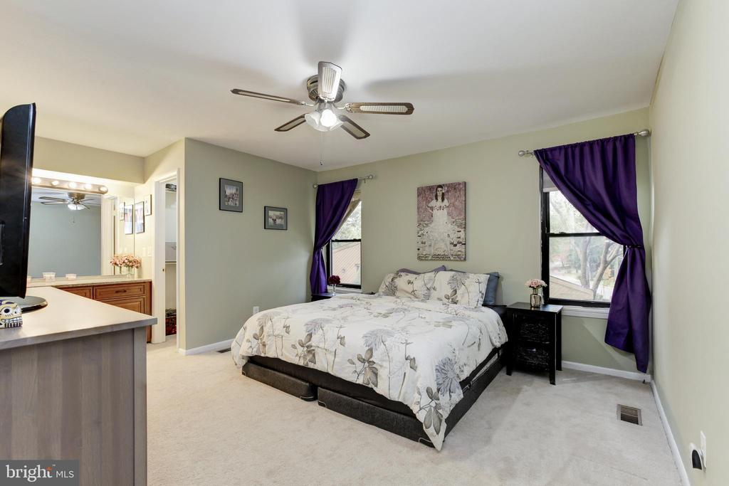 Spacious owner's suite - 6291 CENTRE STONE RING, COLUMBIA