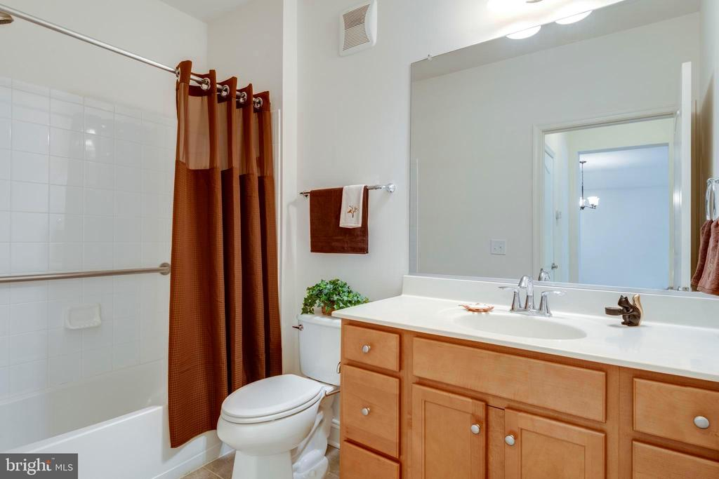 The secondary BA features grab bars too - 9202 CHARLESTON DR #301, MANASSAS