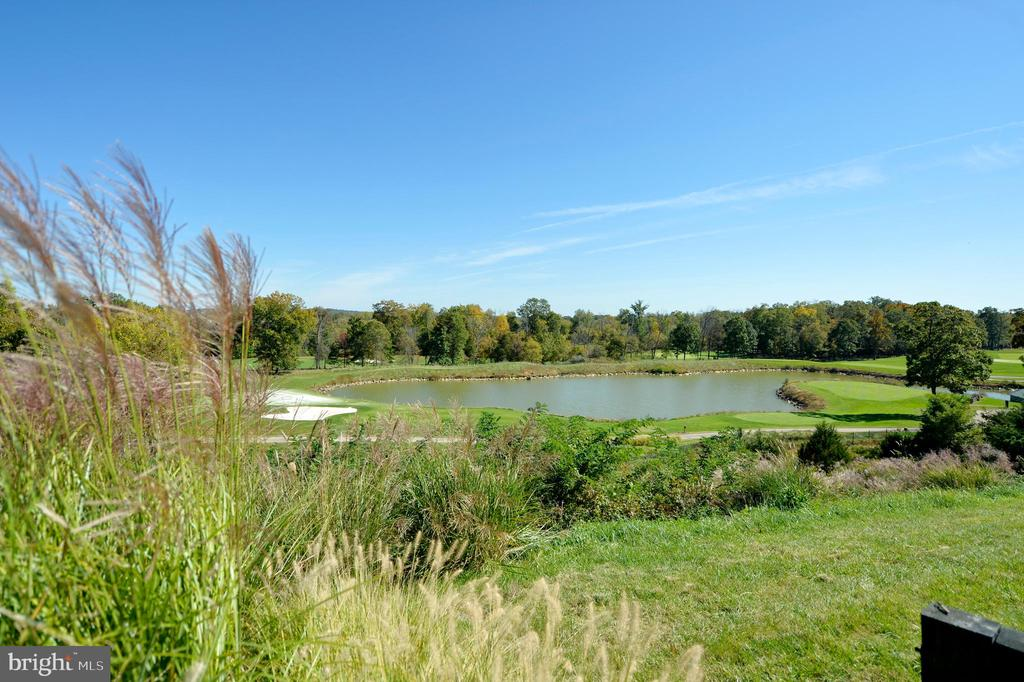 Pond and golf course view 2 - 19350 MAGNOLIA GROVE SQ #211, LEESBURG