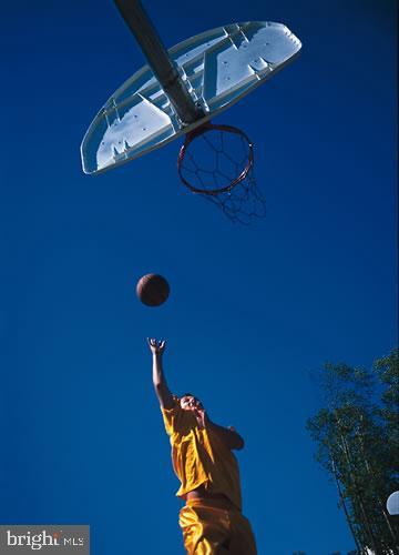 Community Basketball - 43218 BALTUSROL TER, ASHBURN