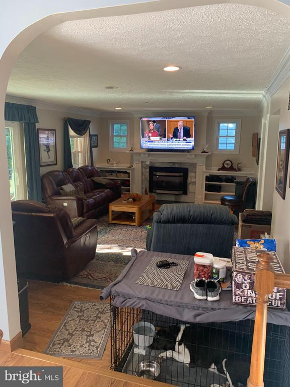 Family Room - 9115 FISHERMANS LN, SPRINGFIELD