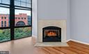 Cozy Fireplace - 1021 N GARFIELD ST #531, ARLINGTON