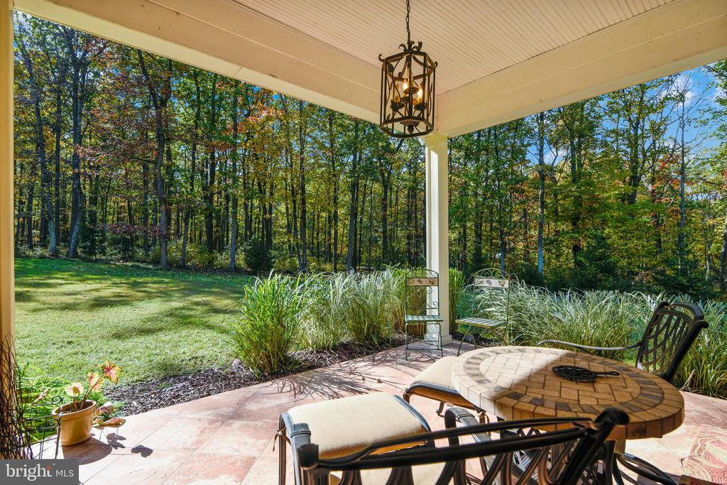 Owner's Private covered Patio & outdoor fireplace - 20448 OATLANDS CHASE PL, LEESBURG