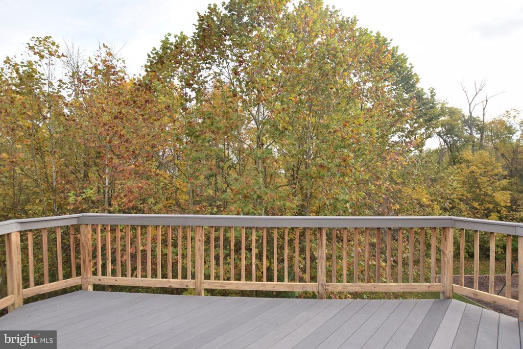 Wooded View from Deck - 248 KIRBY ST, MANASSAS PARK