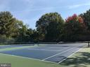 Community Tennis & pickle ball courts - 1600 S BARTON ST #747, ARLINGTON