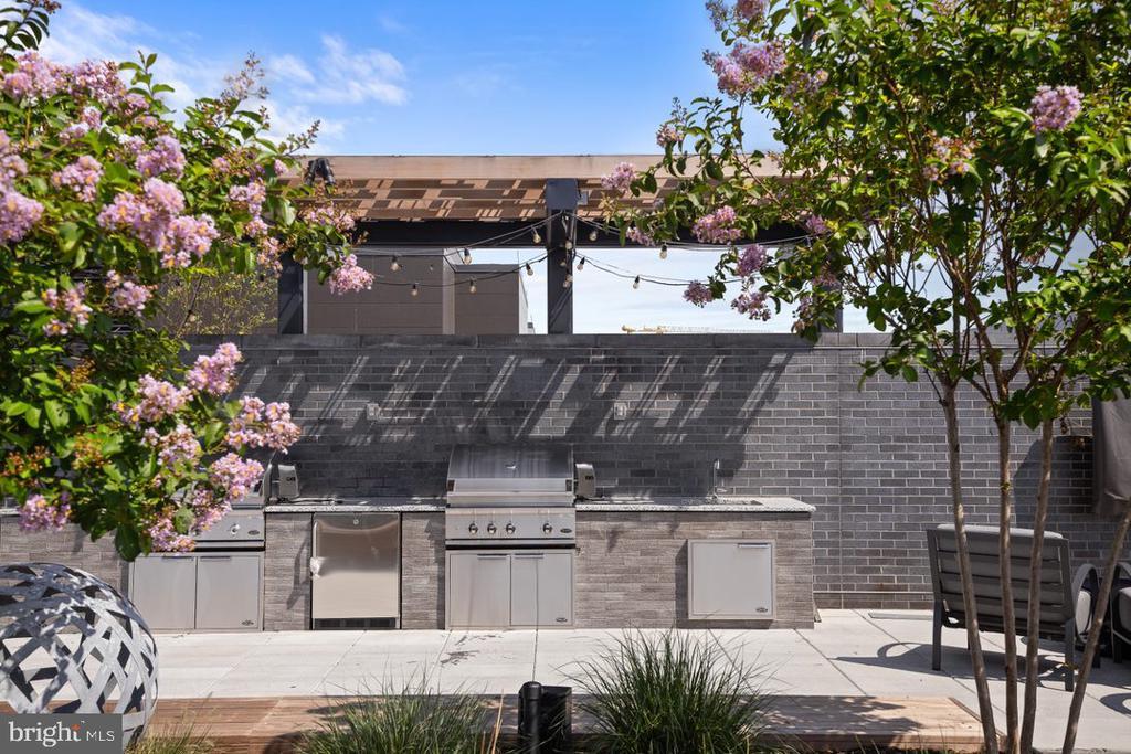 Roof-top w/ grilling station - 70 SE N ST SE #N608, WASHINGTON