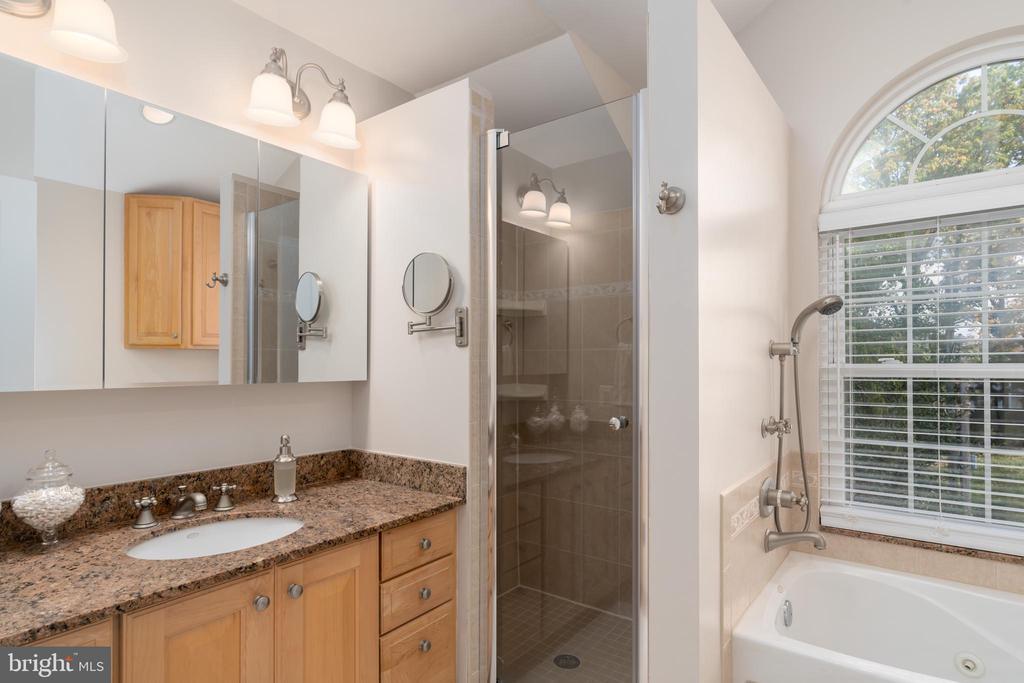 En suite primary bath with separate shower - 3502 HALCYON DR, ALEXANDRIA