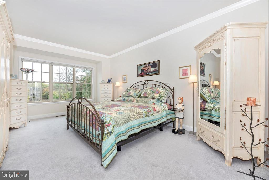 Master Bedroom looks out onto conservancy site. - 2513 MILL RACE RD, FREDERICK