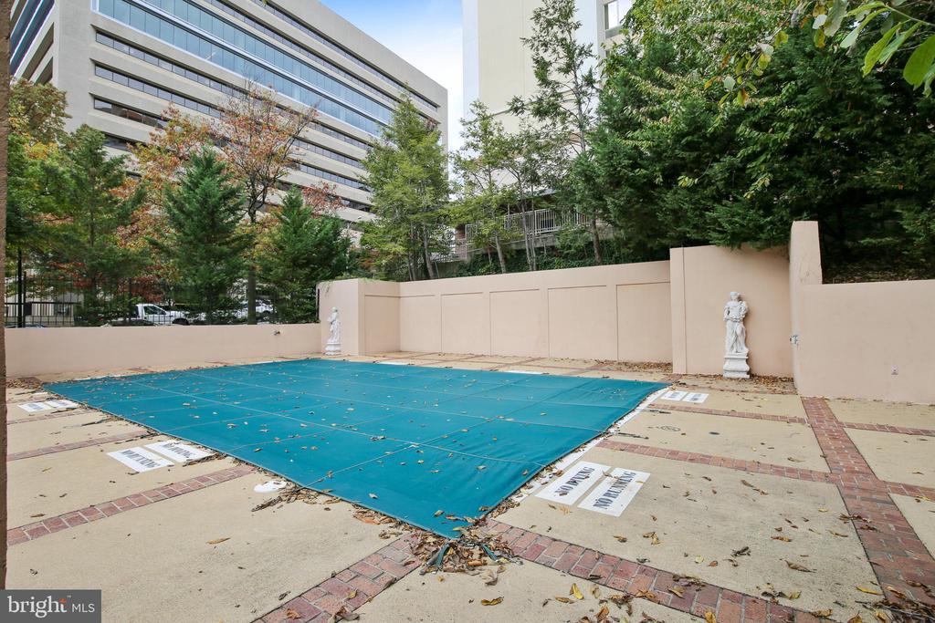 Woodbury Heights Pool - 1301 N COURTHOUSE #1607, ARLINGTON