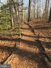 Natural trail - 11580 WOODHOLLOW CT, RESTON