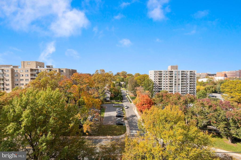 View - 5000 BATTERY LN #1003, BETHESDA