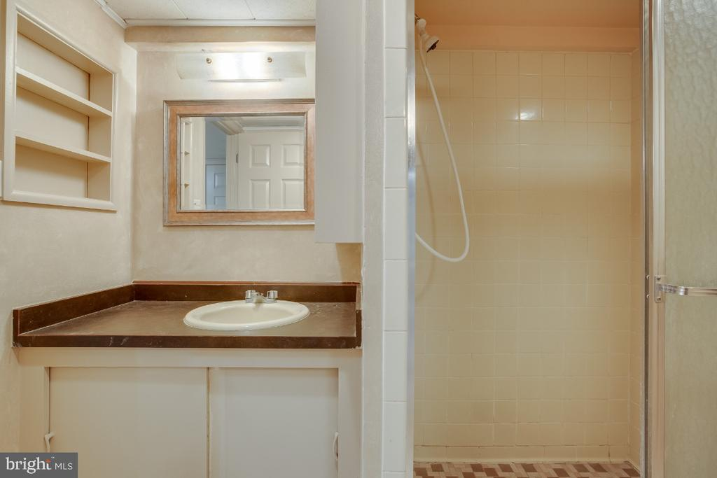 Full bathroom with shower in lower level - 161 LAWSON RD SE, LEESBURG