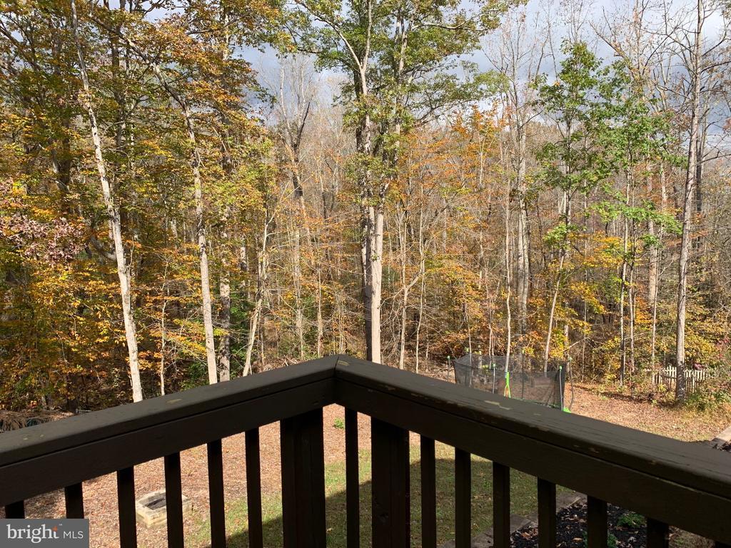 Deck overlooking woods - 35 AMELIA CT, FREDERICKSBURG