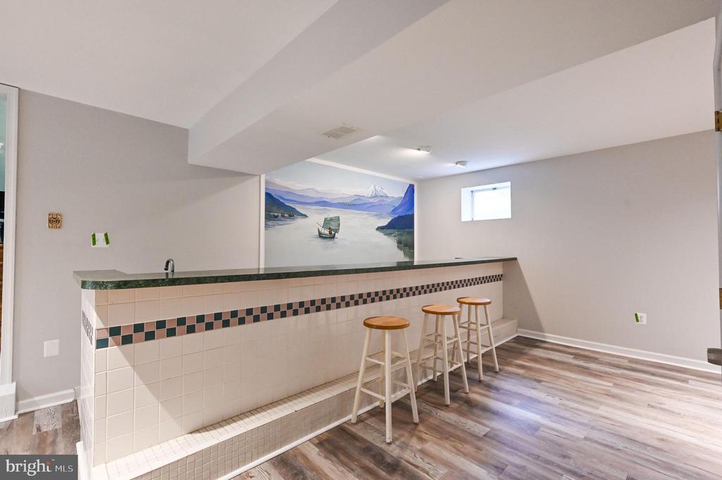 Wet Bar with Custom Mural - 5040 CANNON BLUFF DR, WOODBRIDGE