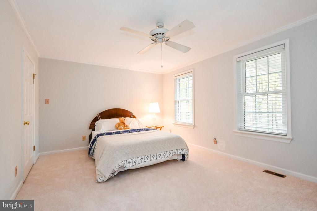 Br 2 with Walk In Closet and Ceiling Fan - 5040 CANNON BLUFF DR, WOODBRIDGE