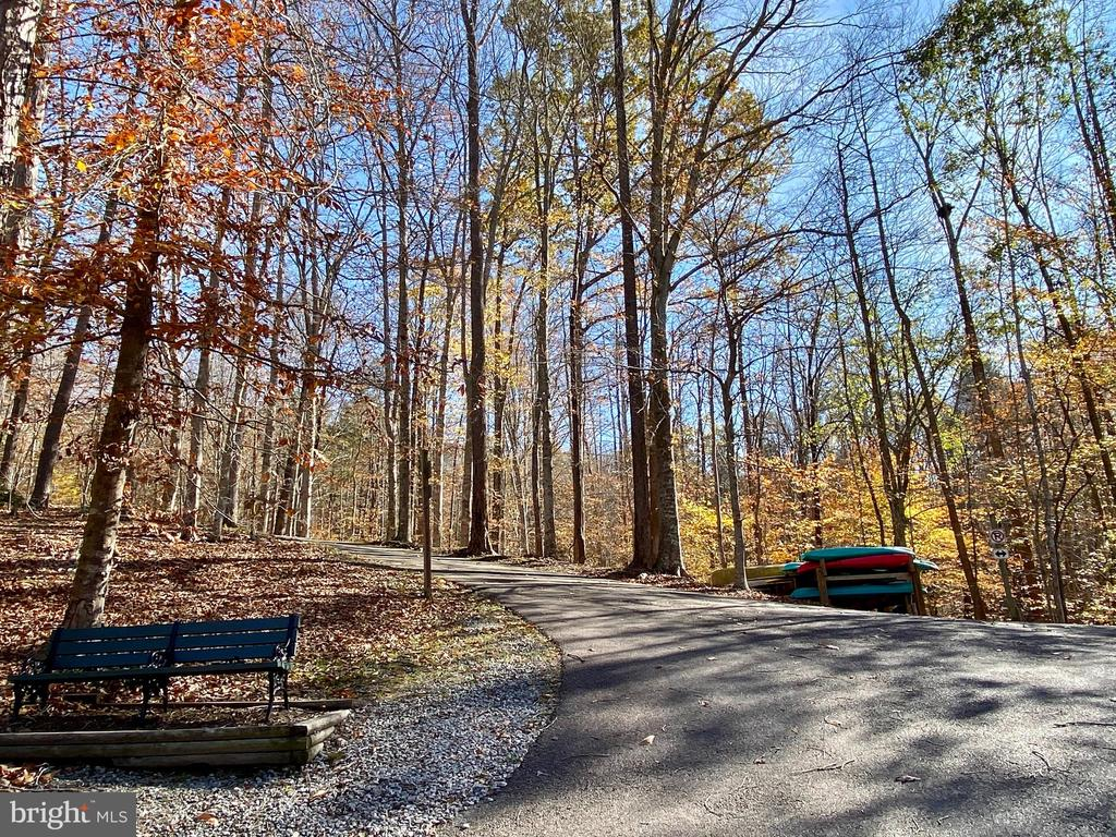 Watch the leaves turn on the private nature trail. - 11798 TARGET CT, WOODBRIDGE