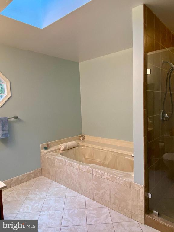 MB Ensuite-Skylight, XL Tub, XLGlass Walkin Shower - 11798 TARGET CT, WOODBRIDGE
