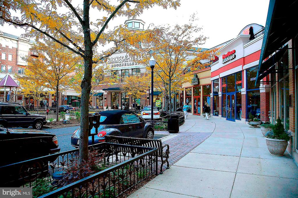 Clarendon Market Common with many shops nearby - 1276 N WAYNE ST #807, ARLINGTON