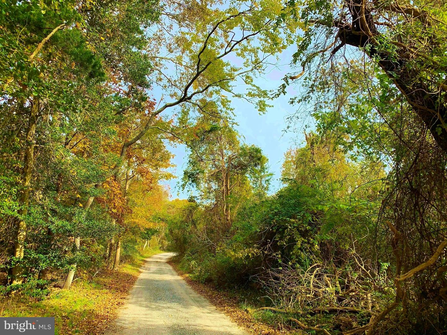 Land for Sale at Galloway, New Jersey 08205 United States