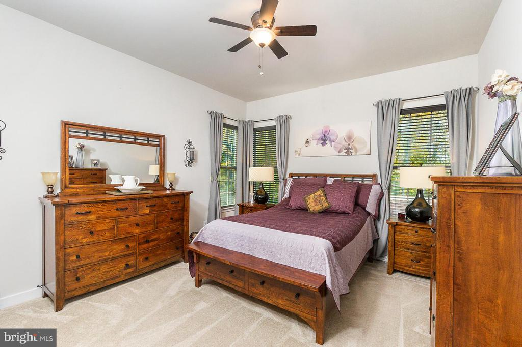 Spacious Master Bedroom with amazing natural light - 18228 RED MULBERRY RD, DUMFRIES