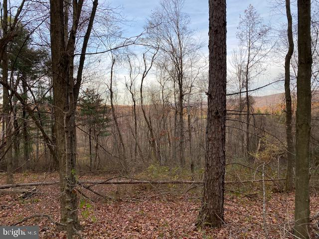 Land for Sale at Claysburg, Pennsylvania 16625 United States