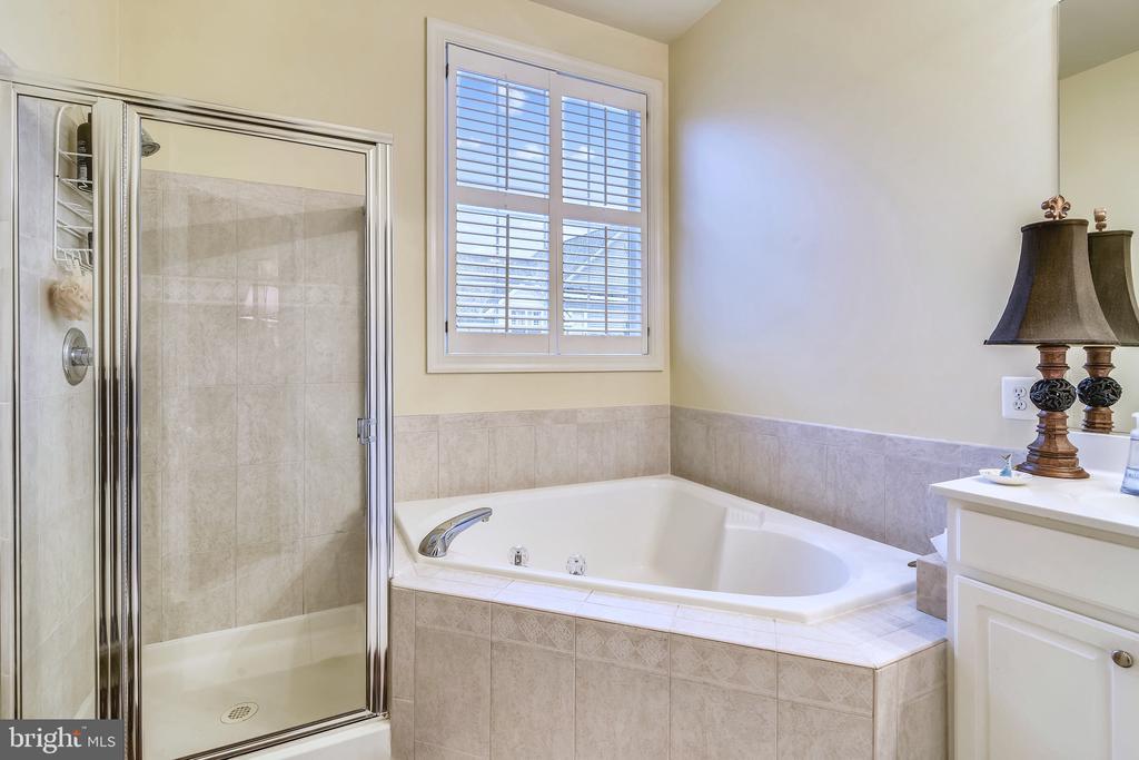 Master Bathroom - 18459 LANIER ISLAND SQ, LEESBURG