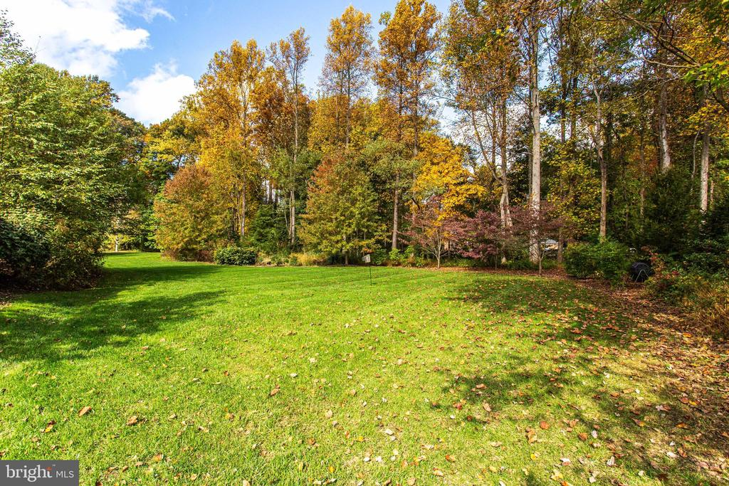 Mature trees for privacy - 10464 SPRINGVALE MEADOW LN, GREAT FALLS