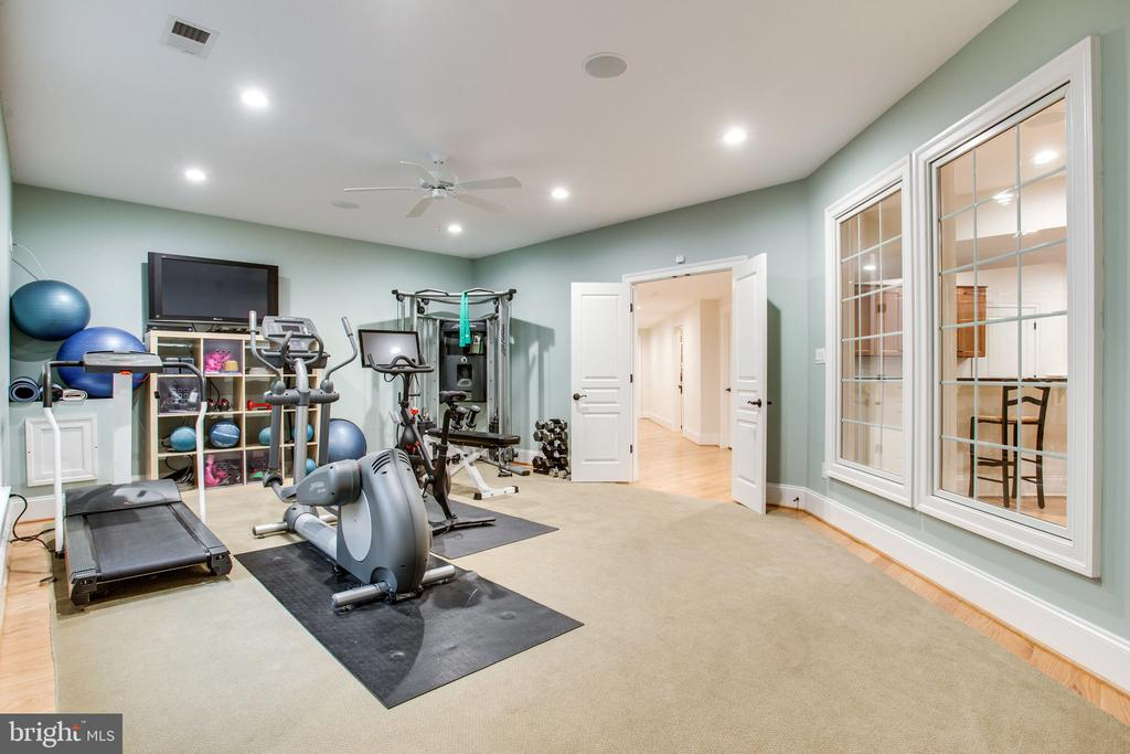 Exercise Room - 10464 SPRINGVALE MEADOW LN, GREAT FALLS