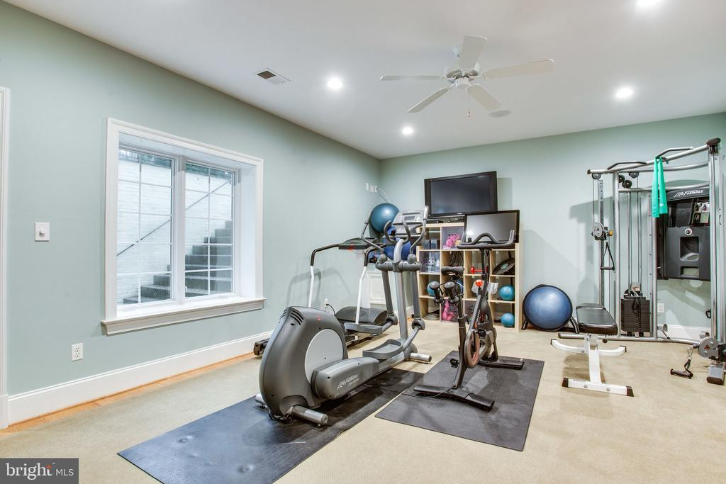 Why pay for a gym membership? - 10464 SPRINGVALE MEADOW LN, GREAT FALLS