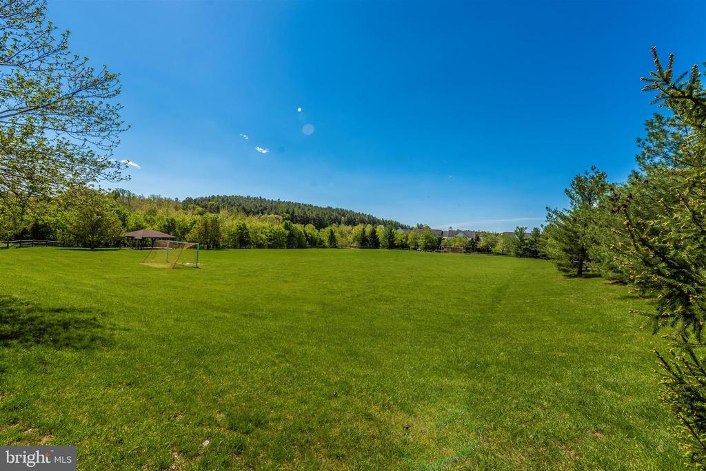 Spring Ridge Community Soccer Fields - 6287 IVERSON TER S, FREDERICK