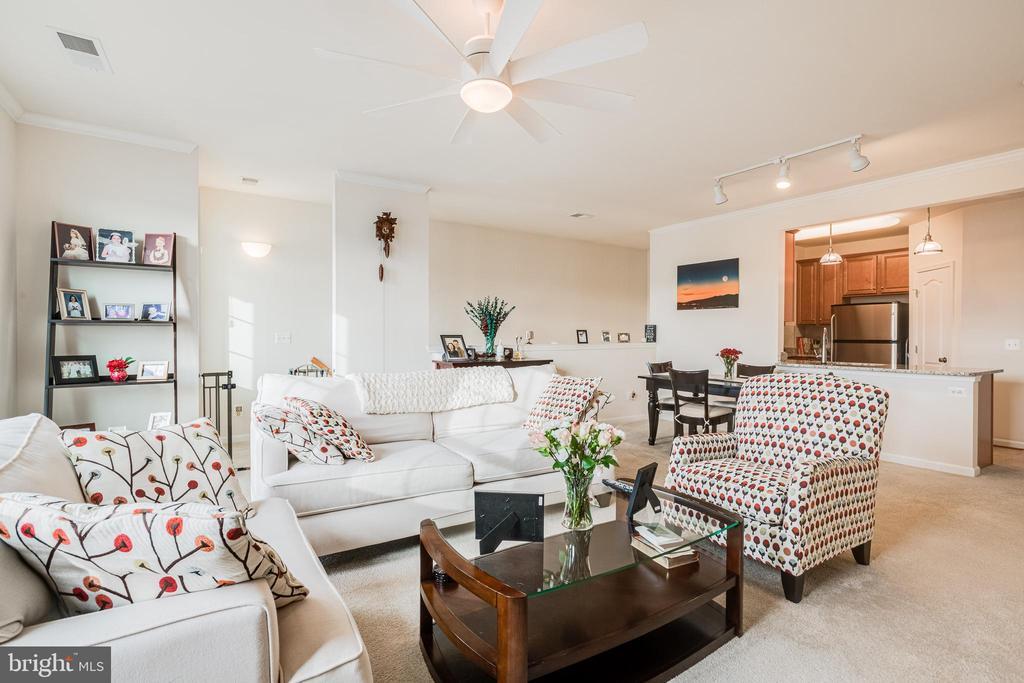 Living room - 24677 LYNETTE SPRINGS TER #302, ALDIE