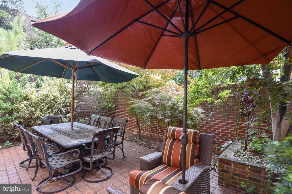 Enclosed backyard - 2034 O ST NW, WASHINGTON