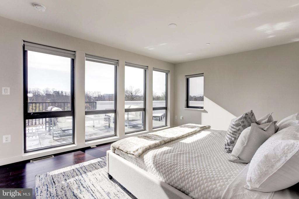 Room with a great view, Very private - 9927 DICKENS AVE, BETHESDA