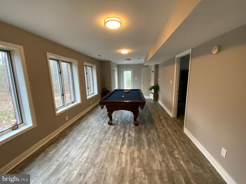 Game Room - Lower Level - 6406 CARTER LN, MINERAL