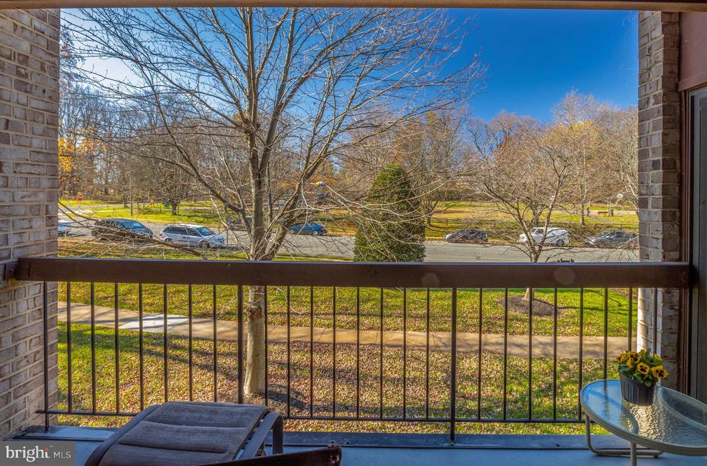 *Great view of Borge Street Park - 3031 BORGE ST #212, OAKTON