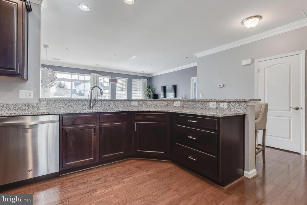 Plenty of work space on these granite countertops - 44021 VAIRA TER, CHANTILLY