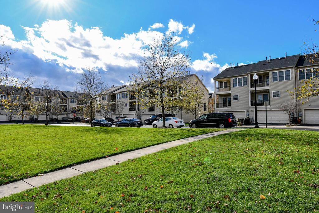 Home backs to open parkland and lots of parking! - 25811 MEWS TER, CHANTILLY