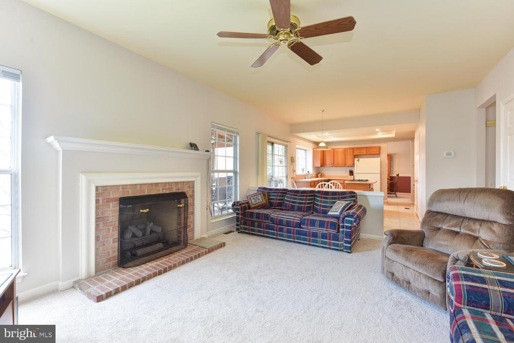 Family room/gas fireplace - 1334 CASSIA ST, HERNDON