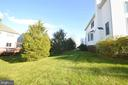 Trees - 25761 KAISER PL, CHANTILLY