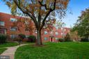 Building with a beautiful garden and trees - 5318 8TH RD S #6, ARLINGTON