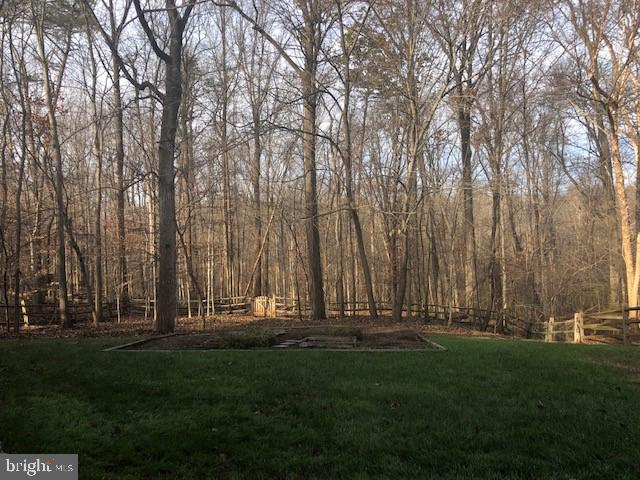 Premium Lot Partially Wooded - 47208 REDBARK PL, STERLING