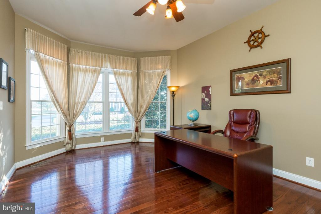 Office/Main Level Guest Bedroom - 40732 CHEVINGTON LN, LEESBURG