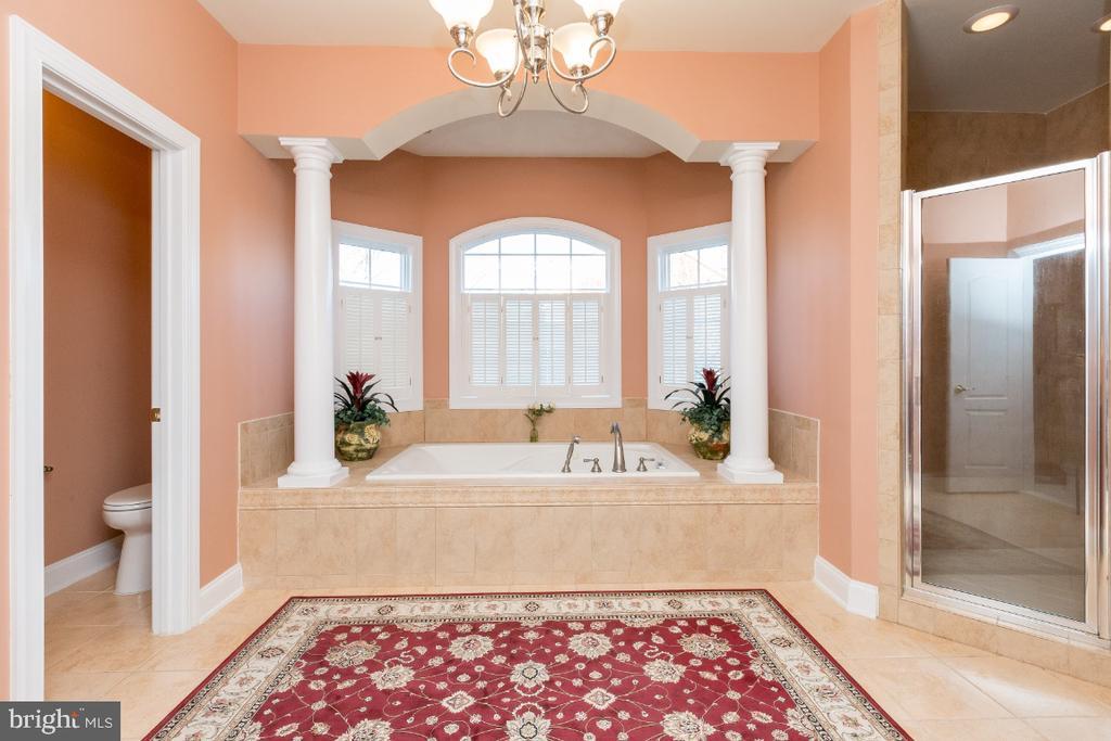 Luxury Master Bathroom - 40732 CHEVINGTON LN, LEESBURG