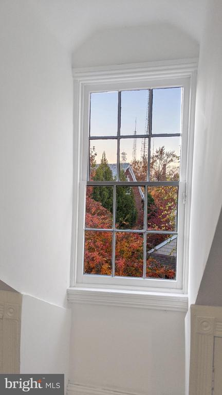 Autumn view from dormer window - 4343 39TH ST NW, WASHINGTON