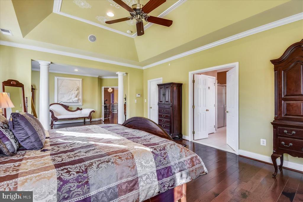 Master Bedroom Suite - 25542 MIMOSA TREE CT, CHANTILLY