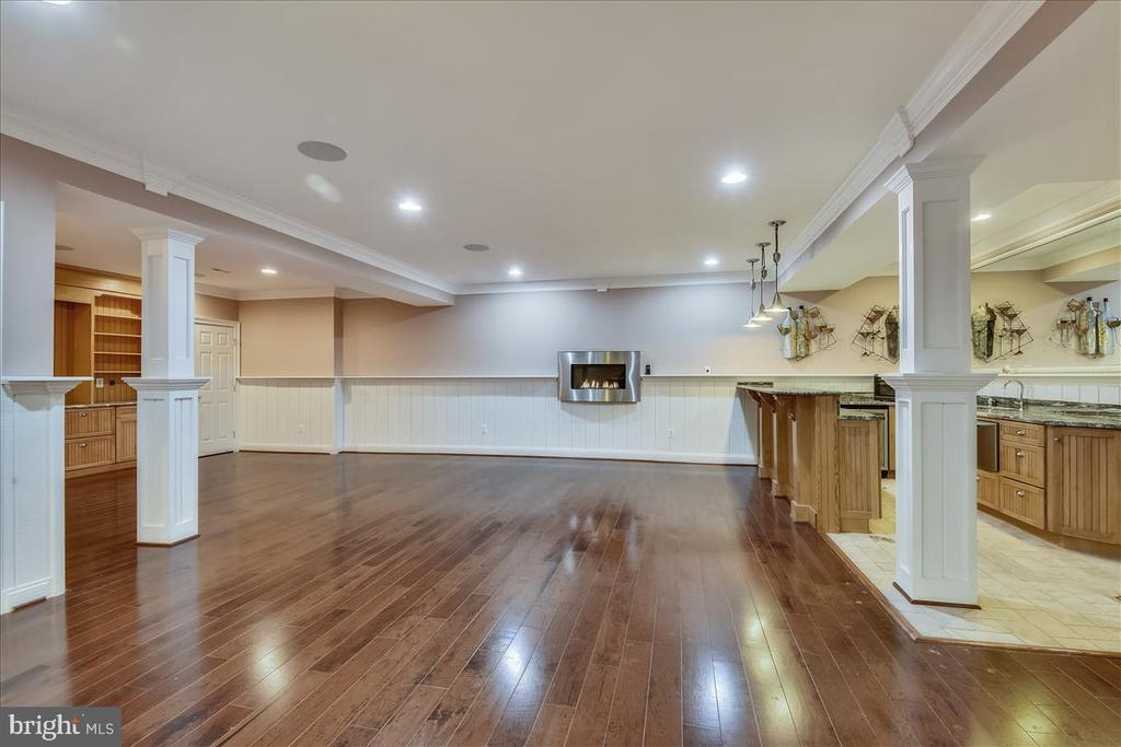 Lower Level - 25542 MIMOSA TREE CT, CHANTILLY