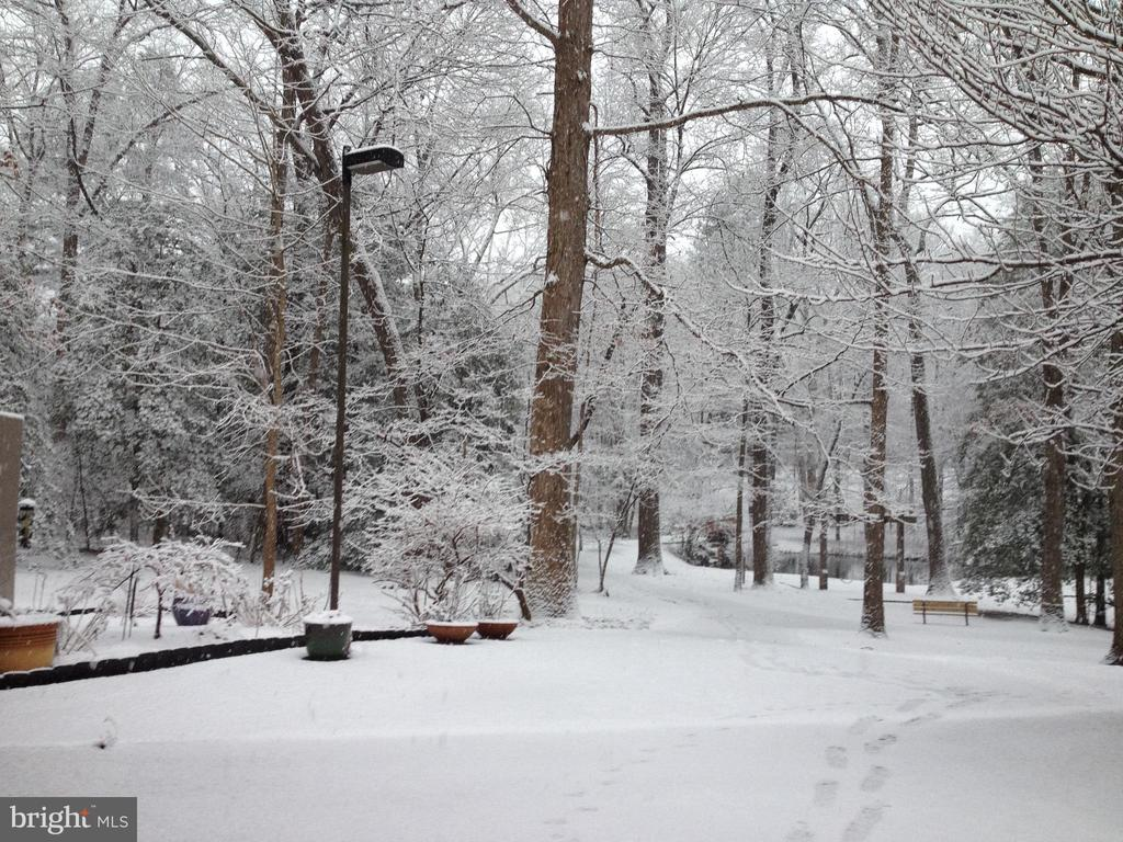 View from gate during the winter - 11503 MAPLE RIDGE RD, RESTON
