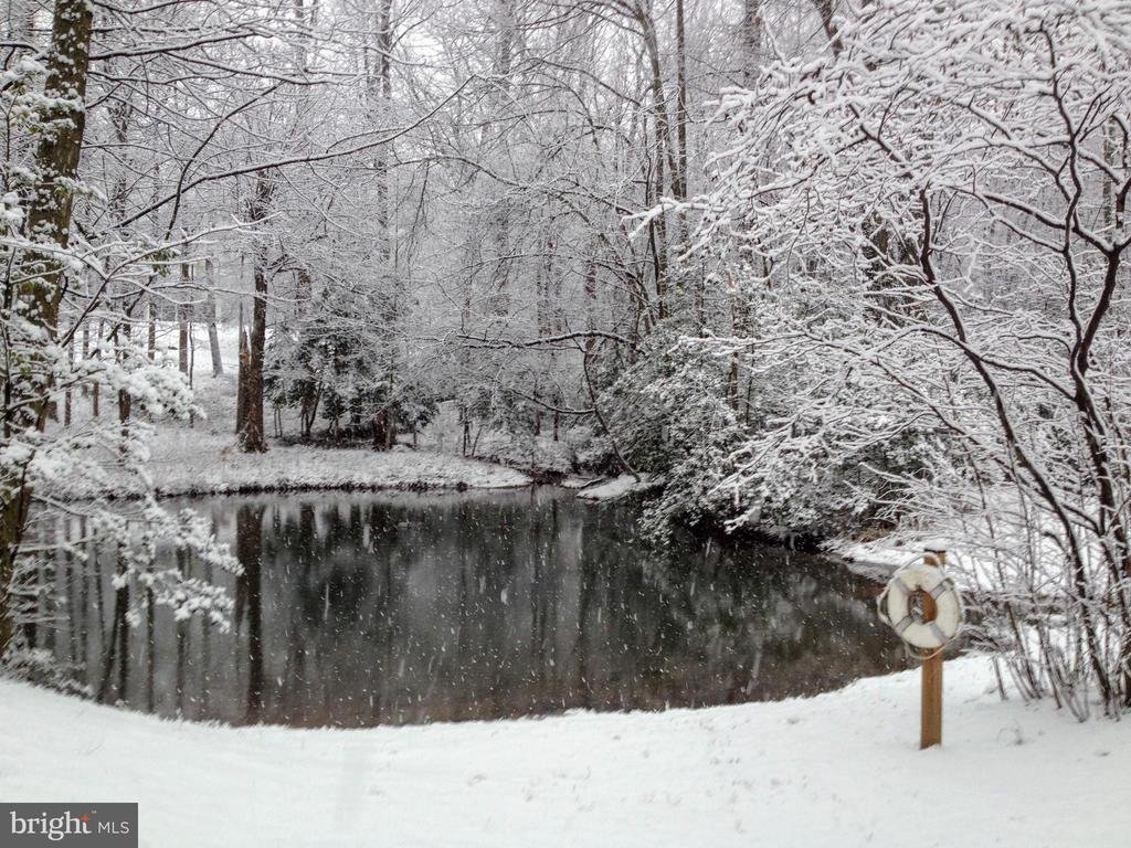 Pond during the winter - 11503 MAPLE RIDGE RD, RESTON