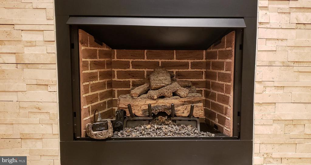 Realistic looking log set and coals - 11503 MAPLE RIDGE RD, RESTON